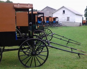 """HONORABLE MENTION  """"Amish Sunday"""" by: Cindy Welch"""